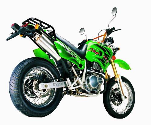 EEC 250cc Motorcycle, ATV, Generator (EWG 250cc Motorrad, ATV, Generator)