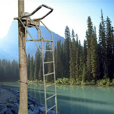 Ladder Stands