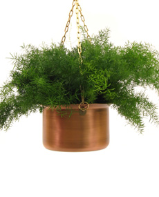 Hanging Copper Planter (Висячие медь Planter)