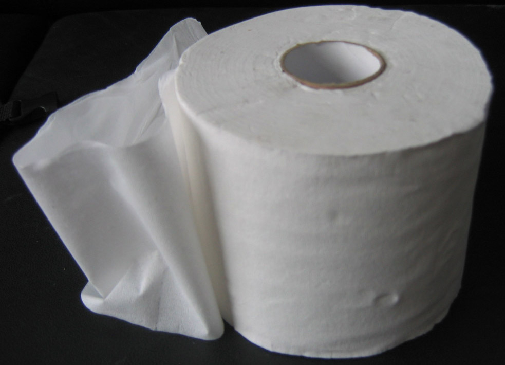 Recycled Toilet Paper (Восстановленный туалетной бумаги)