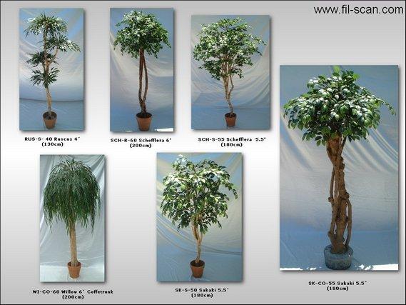 Artificial Trees, Silk Plants (Искусственные деревья, растения Шелковый)