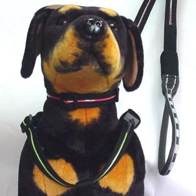 Pet Lead, Pet Collar, Dog Harness (Pet Lead, Pet Collar, Dog Harness)