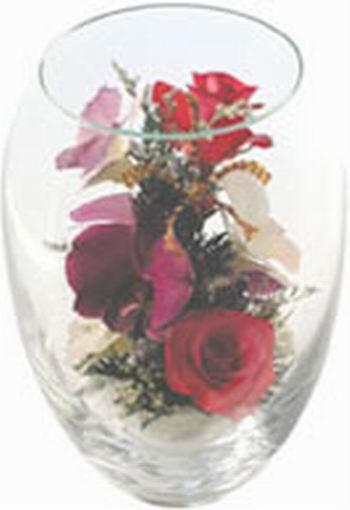 Flower In Glassware As Rose Orchid (В Цветочная посуда как роза орхидея)