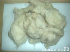 Carpet Wool, Carpet Raw Wool, Wool Waste