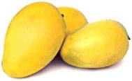 Tremendous Quality Chaunsa Mango (Потрясающее качество Chaunsa Манго)
