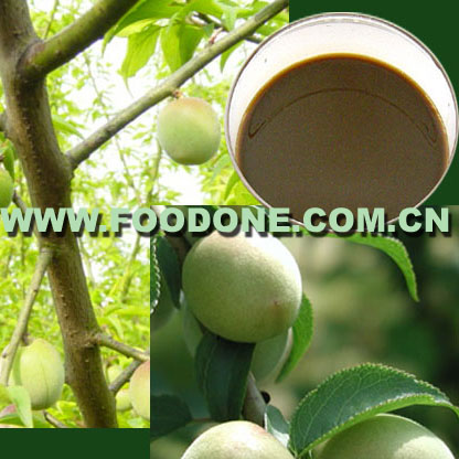 Greengage Juice Concentrate