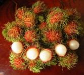 Rambutan (Рамбутан)