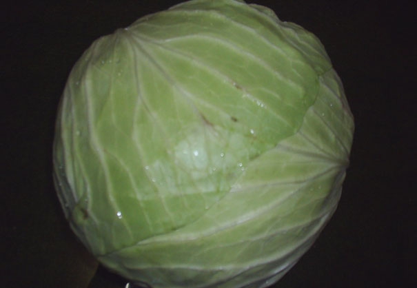 Cabbage (Капуста)