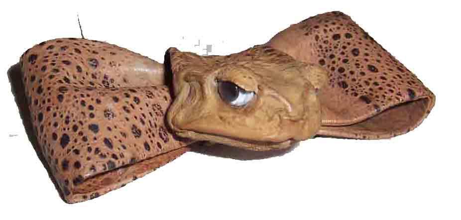 Frog Bow Tie (Лягушка Bow Tie)