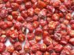 Red Chilli Pepper/ Red Chilli Whole Dundicut (Red Chilli Pepper / Red Chilli Всего Dundicut)