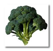 Frozen Broccoli - CECOA (Frozen Broccoli - CECOA)