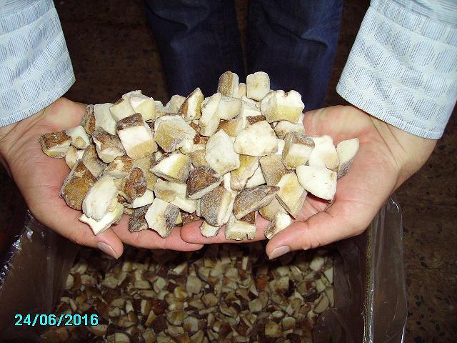 Fresh Season 2007 Wild Mushrooms (Сезон 2007 свежие лесные грибы)