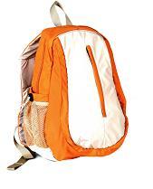 Backpack / Travel Bag (Рюкзак / Дорожная сумка)