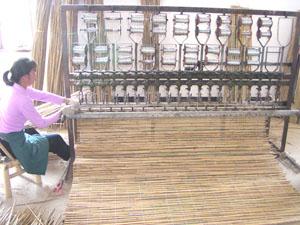 Natural Tonkin Canes (Природные Тонкинского Гончие)