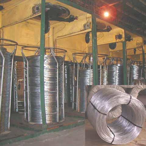 Galvanized Steel Wire (Проволока оцинкованная сталь)