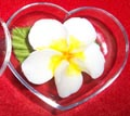 Hand Crafts Soap Flower