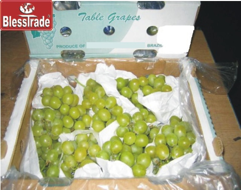 Green Grape, Fresh Fruit