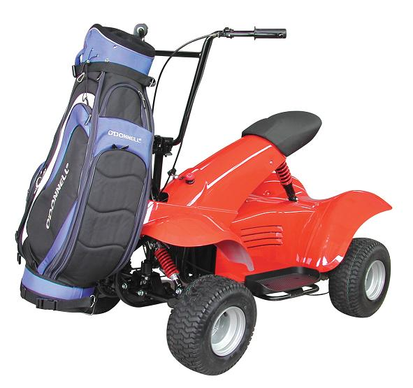 1300W Electric Scooter (1300W электрический скутер)