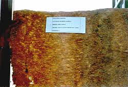 Crepe Rubber, Pale Crepe Rubber (Креп Резина, резиновые Пале Креп)