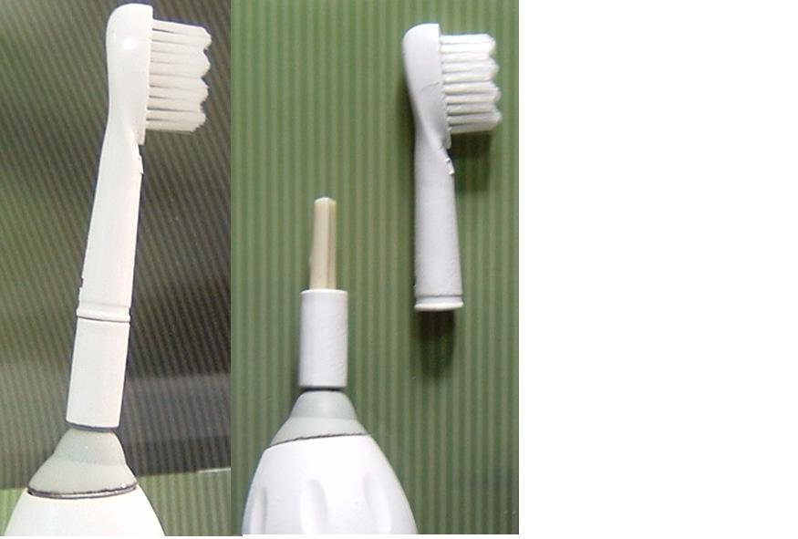 Tooth Brush (Brosse à dent)