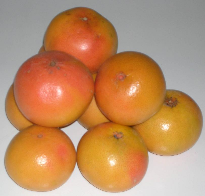 Grapefruit From Turkey