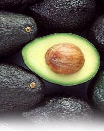 Avocados (Авокадо)