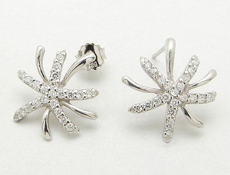 Cz Silver Earring (Cz серебряной сережки)