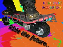 Electric Skateboard (Электрический Скейтборд)