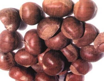 ing Fresh Chestnut (Ing свежие каштановый)