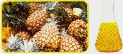 Pineapple Juice Concentrate (Ананасовый сок концентрат)