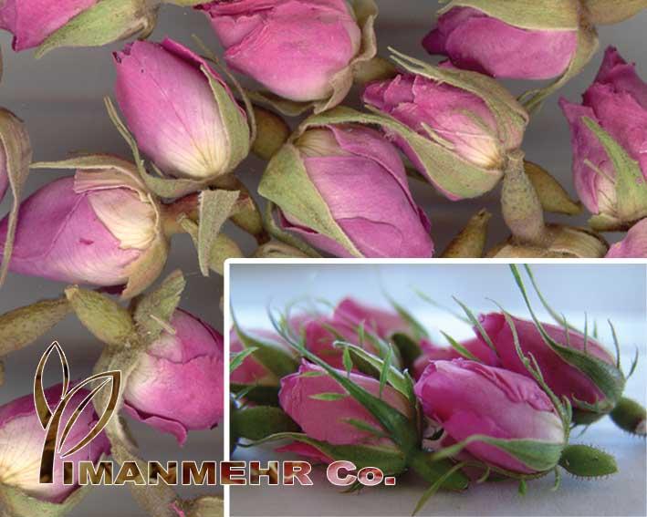 Dried Pink Rose Buds (Сушеные Розовые розы бруньках)