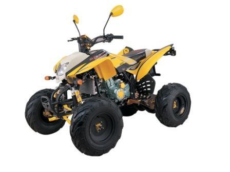 200cc Wassergekühlt ATV Street Legal (200cc Wassergekühlt ATV Street Legal)