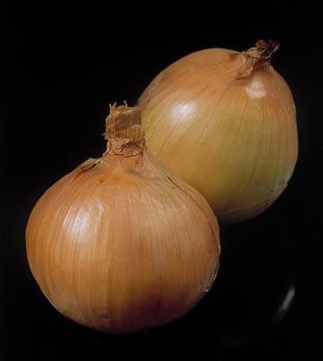 Onions (Лук)