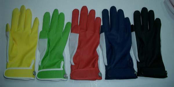 Golf Glove (Golf Glove)
