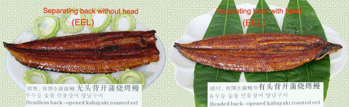 Frozen Roasted Eel With Or Without Head-Back (Замороженные жареный угорь с Или без головы-B k)
