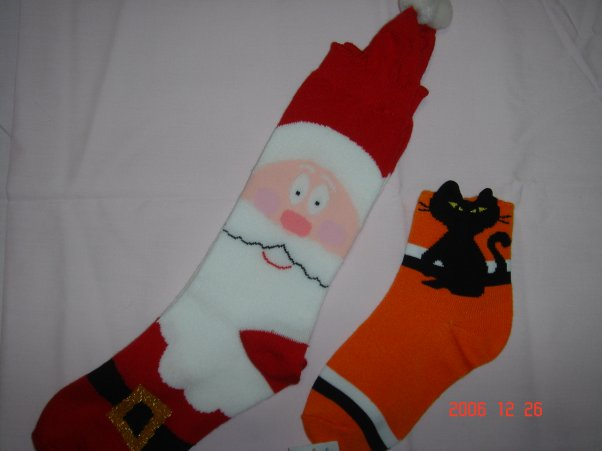 Holiday Sock (Holiday Sock)