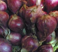Indonesian Red Onion (Индонезийский Красный лук)