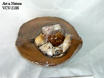 Coconut With Shell Souvenir Item