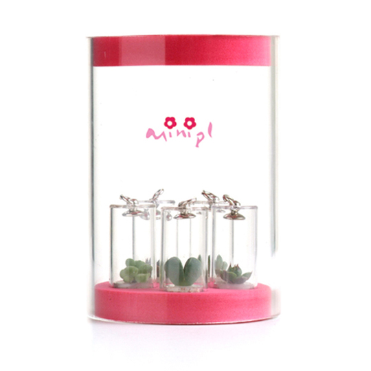 Mini Plant (Мини-завод)