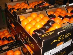 Orange (Апельсин)