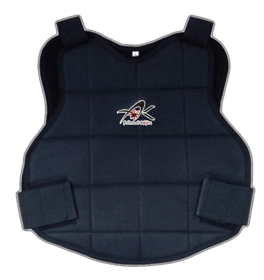 Chest Protector (Chest Protector)