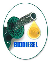 Biodiesel From Brazil (Биодизель из Бразилии)