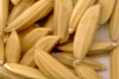 Indian Long Grain Rice (Indian Riz à grains longs)