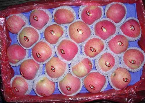 Bagged Qinguan Apple (Мешках Qinguan Apple)