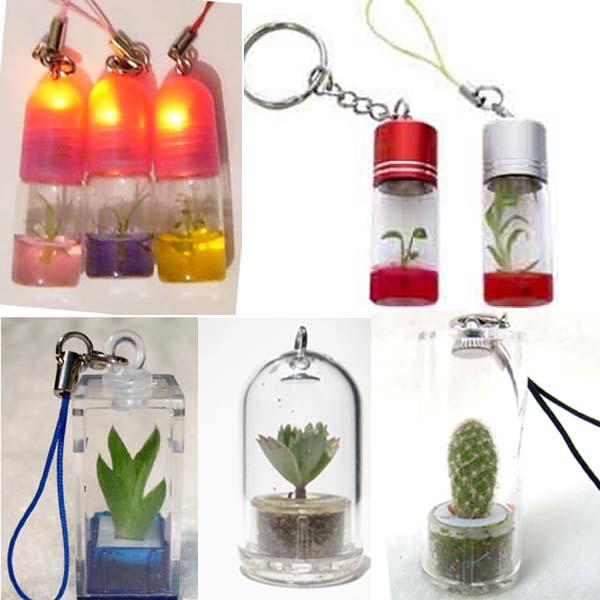 Pet Tree, Pet Plant, Key Chain, Mobile Phone Pendant