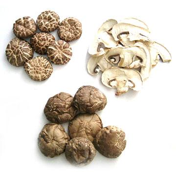 Dried Mushroom / Lentinus Elodes (Сушеные грибы / Lentinus Elodes)