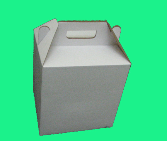 Carry Box (Carry Box)
