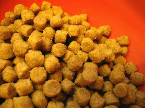 OEM Dry Dog Food (OEM Dry Dog Food)