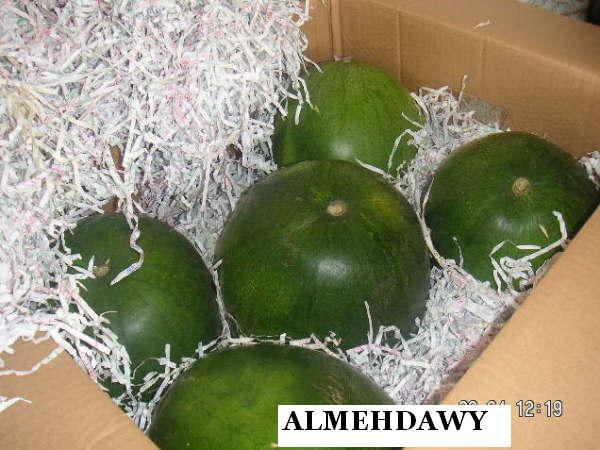 Watermelon (Арбуз)