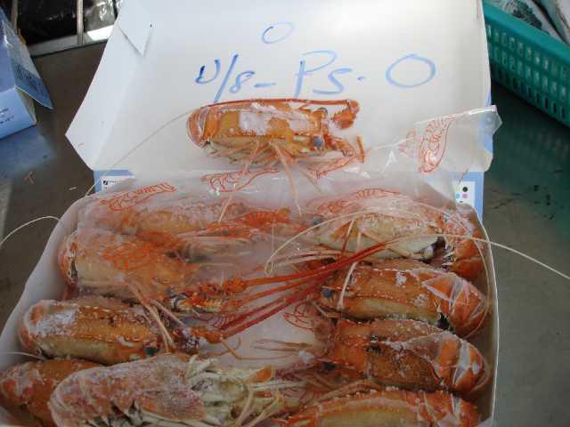 On Board Frozen Deep Sea Lobsters & Red Ring Shrimps (На борту Frozen D p Sea & омары красное кольцо Креветки)
